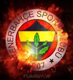 Fenerbahçe, Stuttgart'tan Orel Mangala'yımı istiyor?