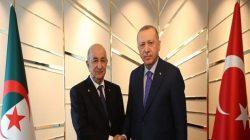 Başkan Erdoğan,Cezayir Cumhurbaşkanı Abdulmecid Tebbun  basın toplantısı düzenledi
