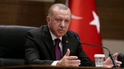 Mısır'da Erdoğan ve Türkiye rahatsızlığı zirve yaptı