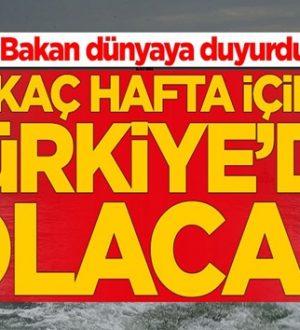 Fatih Dönmez duyurdu: Birkaç hafta içinde Türkiye'de