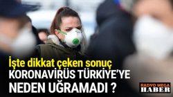 Dünyayı sarsan  koronavirüs Türkiye'ye neden uğramadı ?