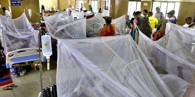 Malezya'da koronavirüsten sonra 'Dang Humması' salgını başladı