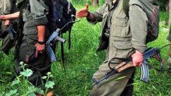 Terör örgütü PKK/YPG'nin koronavirüs oyunu deşifre oldu