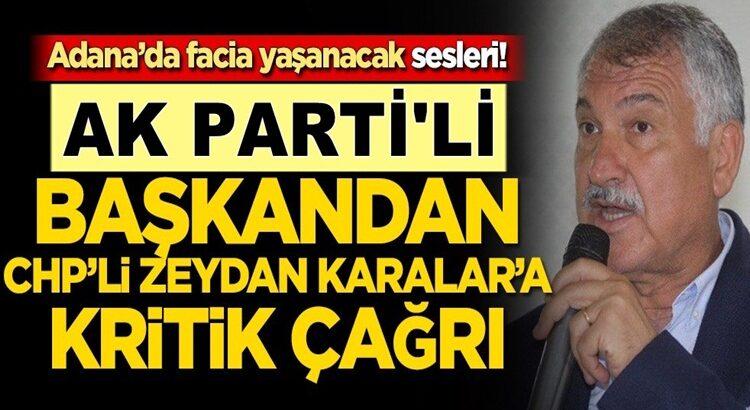 Adana'da Koronavirüs bitmeden sivrisinek faciası kapıya dayandı