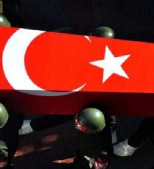 Bitlis-Merkeze bağlı Sehi bölgesinde 2 askerimiz şehit oldu