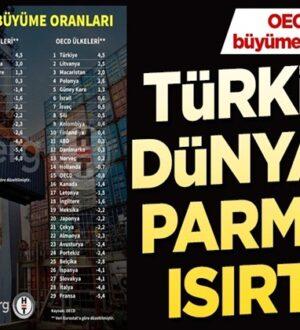 OECD Raporlarına göre Türkiye büyümede Liderlik koltuğunda