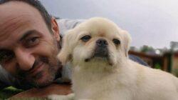 Survivor Ersin'e köpeği Mes'in öldüğünü Acun Ilıcalı söyleyecek!