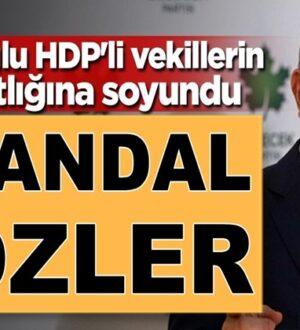 Ahmet Davutoğlu'ndan skandal sözler HDP'li vekilleri savundu