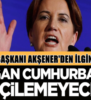 Meral Akşener'den Cumhurbaşkanı Erdoğan hakkında ilginç iddia
