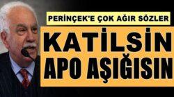 MHP'li Cemal Enginyurt'tan Doğu Perinçek'e: Katilsin, Apo aşığısın