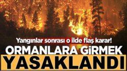 Eskişehir'de yangınlar sonrası Ormanlara girmek yasaklandı