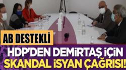 AB'ye giden HDP'den Selahattin Demirtaş için skandal isyan çağrısı!