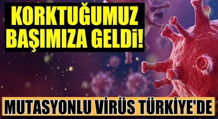 Bakan Koca açıkladı! İngiltere'de ortaya çıkan mutasyon virüs Türkiye'de