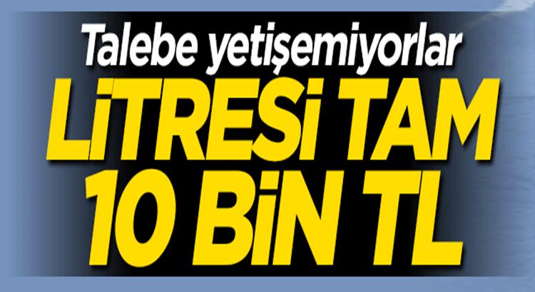 Mersin, Erdem'lide Propolis'in Litresi tam 10 bin TL! Talep yağıyor