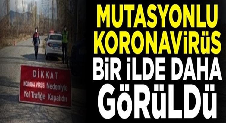 İngiltere merkezli Mutasyonlu koronavirüs Türkiye'de bir ilde daha görüldü