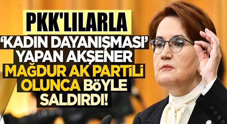 Meral Akşener, Ak Parti'li Özlem Zengin'e ağzına ne gelirse saydırdı