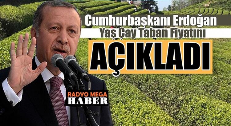 Başkan Recep Tayyip Erdoğan yaş çay alım fiyatını açıkladı
