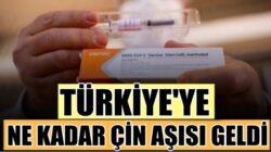 Türkiye'ye ne kadar Çin'de üretilen Koronavirüs aşısı geldi