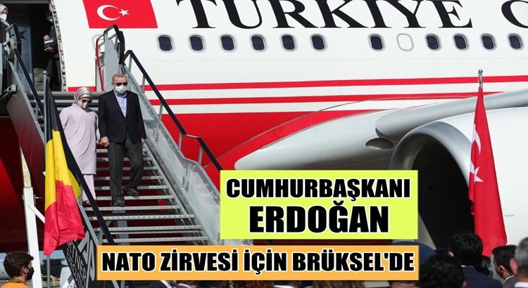 Cumhurbaşkanı Erdoğan Brüksel'de sevgi gösterileriyle karşılandı