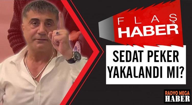 Sedat Peker'in Dubai'de MİT'in operasyonu ile yakalandığı haberi geldi