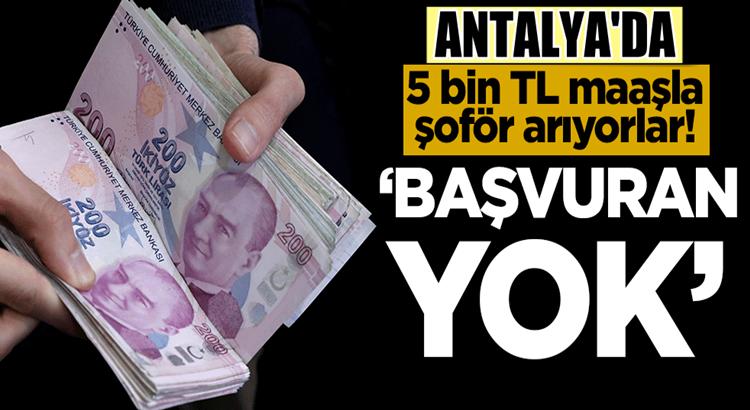 Antalya'da 5 bin TL maaşla şoför arıyorlar! 'Başvuran yok'