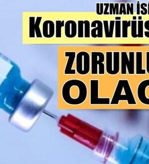 Türkiye'de Koronavirüs aşısı zorunluluğumu? Geliyor uzman isim açıkladı
